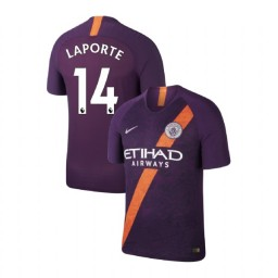 2018/19 Manchester City Soccer Third #14 Aymeric Laporte Purple Authentic Jersey